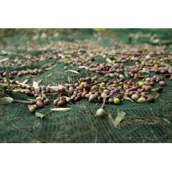 Δίχτυα συλλογής ελιών βάρους 90 gr/m2